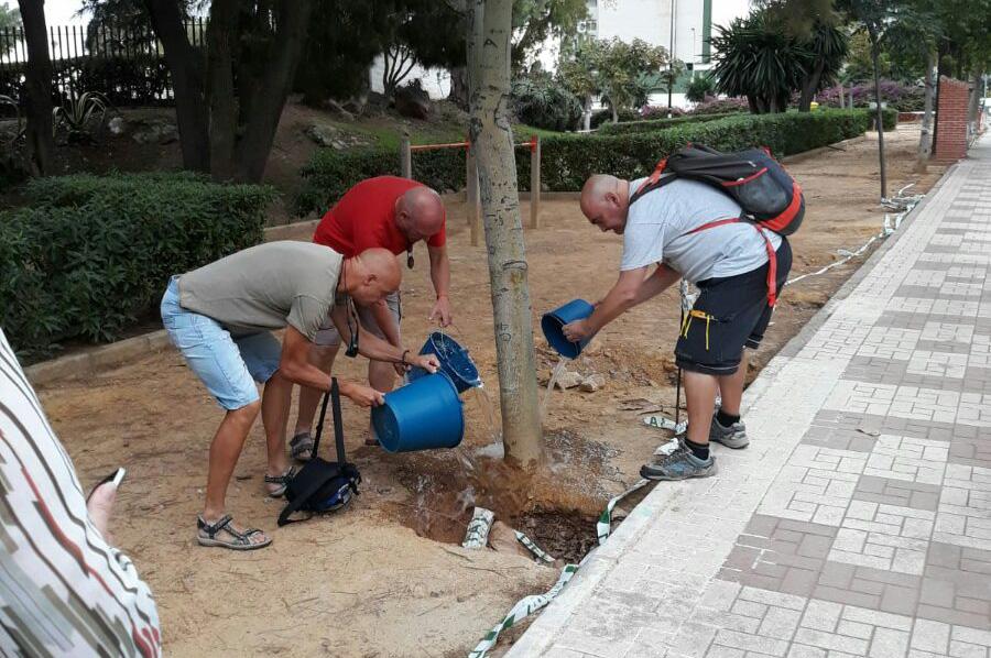 Jardines 'Pipi': vecinos riegan unos árboles que llevan más de un mes sin recibir agua