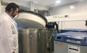 El Hospital Regional Carlos Haya lidera en Andalucía los trasplantes de médulas ósea