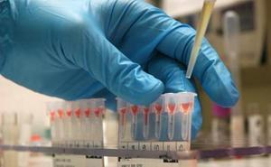 La Audiencia de Málaga ordena hacer pruebas de ADN a seis hermanos por una demanda de paternidad