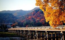 Japón, el placer de la caída de las hojas