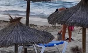 Agente gaviota 007, el ciudadano anónimo que 'caza' en vídeo a los ladrones
