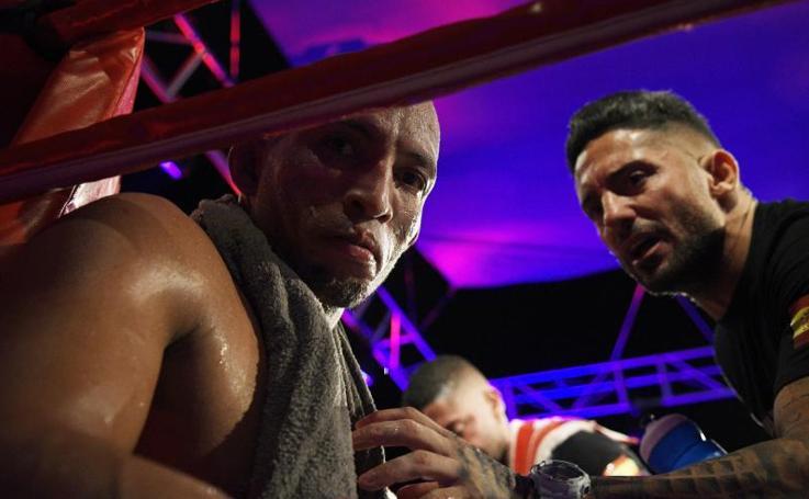 El campeonato Unión Europea de Boxeo celebrado en Torremolinos, en imágenes