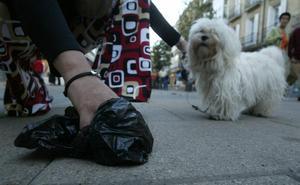 El PP se compromete a poner más sanciones por no recoger los excrementos caninos en Málaga