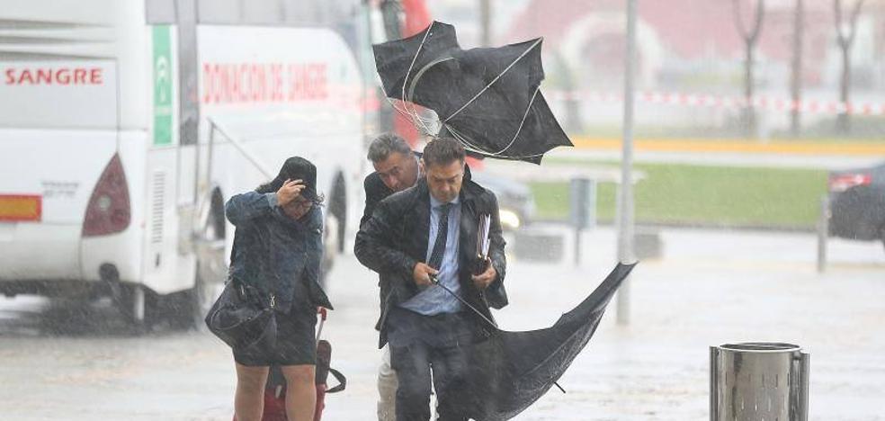 El temporal remite tras dejar medio centenar de incidencias en Málaga