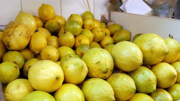 Málaga volverá a liderar la producción andaluza de limón con 74.616 toneladas en esta campaña