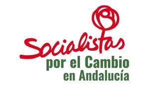 Candidatura de SSPC/P15M por Málaga a las elecciones andaluzas (rechazada por la Junta Electoral Provincial)