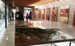 Alcazaba-Gibralfaro: los insectos, visitantes no deseados