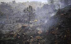 Piden a la Junta que aclare qué empresa debe valorar los daños causados por el incendio de 2012 en Málaga que quemó 8.225 hectáreas
