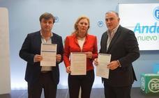 El PP acusa al Gobierno de «paralizar» 25 obras en Málaga y le pide que «las saque adelante»