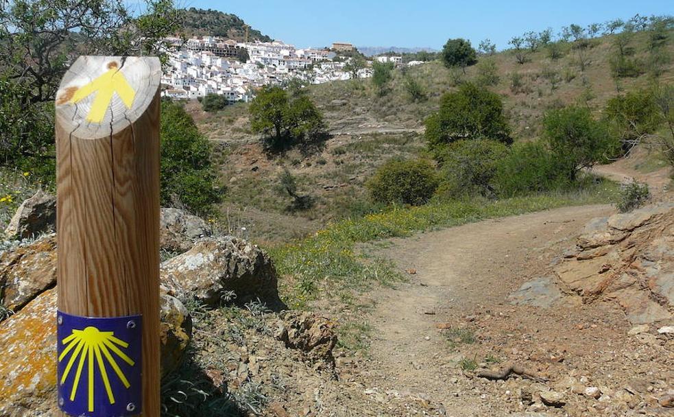 Uno de los últimos hitos antes de llegar a Almogía./