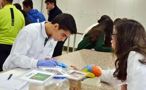 Estudiantes de Secundaria se acercan a la ciencia con los talleres divulgativos en la UMA