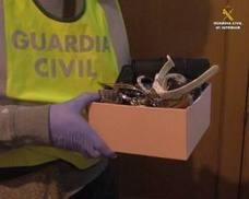 Cae el grupo 'Lanzas Internacionales', el más activo en robo de viviendas que también actuó en Málaga