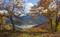 La Diputación incrementará la promoción del Bosque de Cobre de Málaga con la señalización de 19 senderos