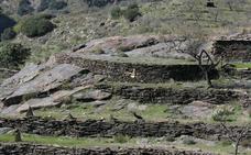 Los balates de la Axarquía, reconocidos como Patrimonio de la Humanidad por la Unesco