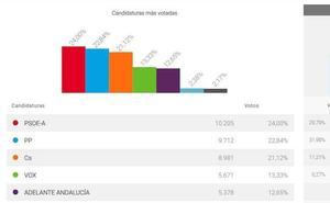 El PSOE arrebata el liderazgo al PP en Marbella tras más de una década