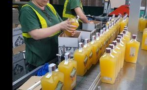 Trops lanza Mangocello, un nuevo licor digestivo a base de mango de Málaga
