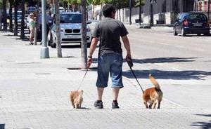Benalmádena obligará a los dueños de perros a limpiar los orines con jabón o vinagre