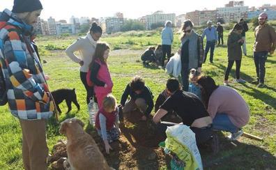 Plantación simbólica en los terrenos de Repsol de Málaga