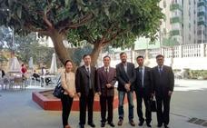 Visita de una delegación china