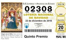 El quinto 02308 deja 36.000 euros en Málaga, Tolox, La Cala, Ronda, San Pedro Alcántara y Torrox