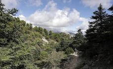 Las empresas esperan al parque nacional para despegar en la Sierra de las Nieves