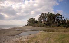 El Ayuntamiento de Estepona construirá un puente sobre el arroyo Velerín para ampliar la Senda