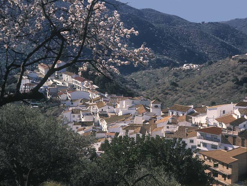 Diputación de Málaga invierte 450.000 euros en un Museo del Aceite en Cómpeta y un Centro de Estudios de la Pasa en Moclinejo
