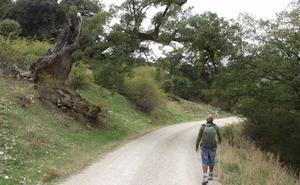 Rutas de senderismo para quemar calorías en Málaga