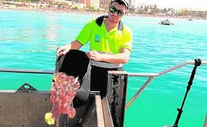Marbella estudia usar redes este verano para proteger de las medusas algunas zonas de baño
