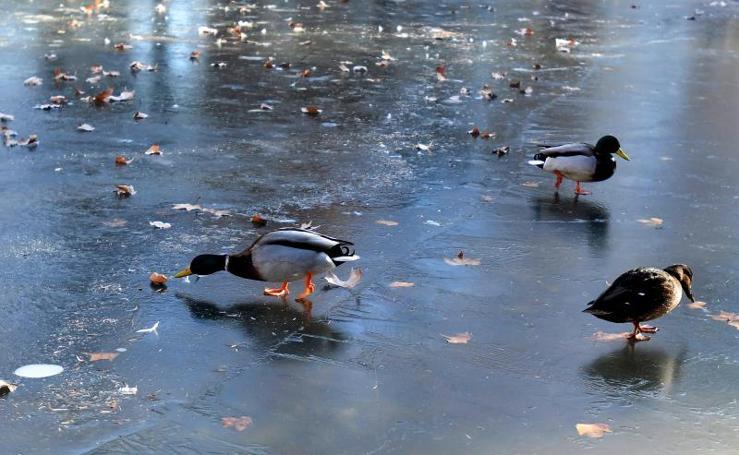 Las imágenes que deja la ola de frío en España