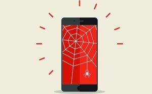 Arañas en la red