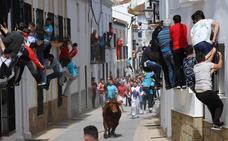 Gaucín declara su toro de cuerda patrimonio cultural
