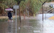 Confirman que el cadáver hallado en una playa de Casares es el del desaparecido tras las lluvias de octubre en Coín