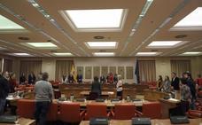 El Congreso guarda un minuto de silencio en recuerdo de Julen