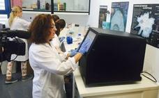Málaga necesita potenciar la investigación y los cuidados paliativos en la lucha contra el cáncer