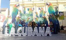 La Cubana regresa mañana al Cervantes con 'Adiós Arturo'