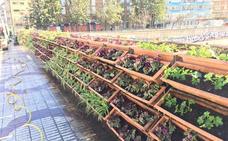 Unas jardineras renovadas en el Puente de Tetuán