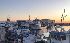 La flota de cerco sigue con el paro que ha dejado a los mercados sin sardinas y boquerones de Málaga