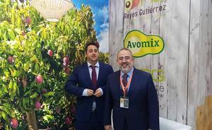 El 'agro' de Málaga regresa de Fruit Logística cargado de nuevos pedidos