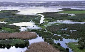 Europa pide nuevos informes sobre los riesgos del gaseoducto de Doñana
