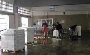 El conflicto entre el cerco y los compradores deja sin vender las sardinas y boquerones en Caleta