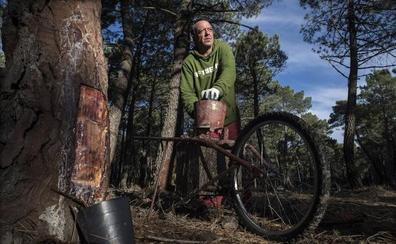 Soria, la provincia donde (casi) no hay parados