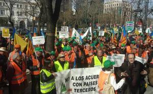 Citricultores malagueños protestan en Madrid contra las importaciones de cítricos a la UE