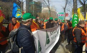 CITRICULTORES MALAGUEÑOS PROTESTAN EN MADRID