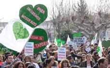 Miles de personas se manifiestan en Valladolid en defensa de la Educación Especial