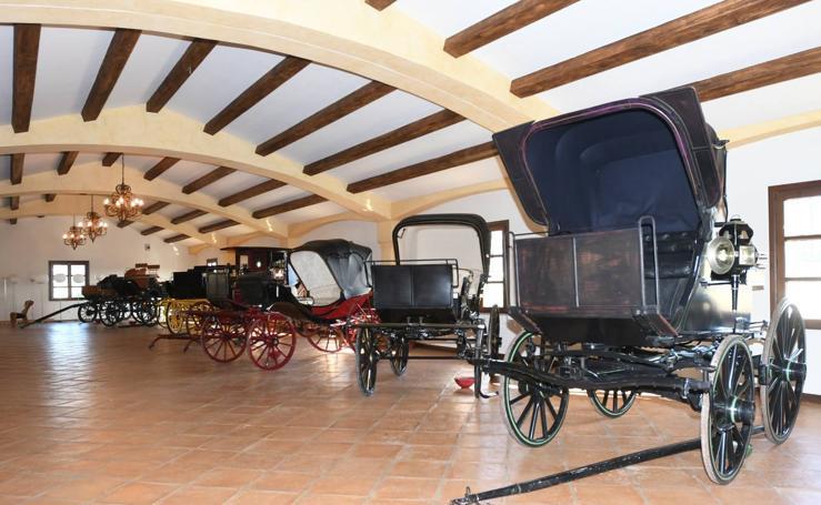 Así son las fincas más lujosas de Roca, que ya son propiedad del Ayuntamiento de Marbella