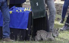 Andalucía descarta que un tribunal pueda prohibir la caza como en Castilla y León