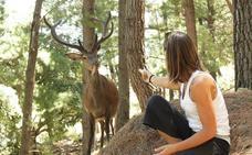 Ecoreserva de Ojén: un paseo con ciervos y muflones en plena costa del sol
