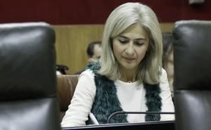 La Junta confirma que «este mes» se reunirá el Consejo Andaluz de Memoria Histórica