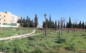Fotodenuncia: una zona verde abandonada